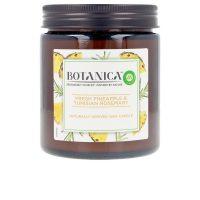 Illatosított Gyertya Botanica Pineapple & Tunisian Rosemary Air Wick (205 g) MOST 6596 HELYETT 4344 Ft-ért!