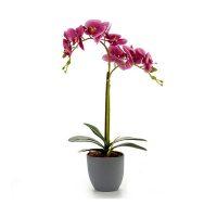 Dekoratív virág Műanyag Orchidea MOST 8333 HELYETT 4677 Ft-ért!