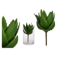Dekor növény Aloe vera (14 x 23 x 14 cm) MOST 5774 HELYETT 2806 Ft-ért!